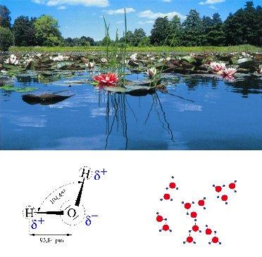 Parametry wody